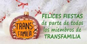 Encuentro y dinamica del grupo transfamilia de diciembre @ Centre LGTBI de Barcelona